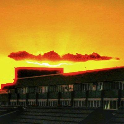 Selondon Selondonforever Selondonsky Selondontillidie silwood silwoodestate silwoodregeneration sunset sunsets sunset_madness sunsetlovers sunsetporn sunsetsniper sunset_pics sunset_hub sunsethunter sunset_united sunsets_captures