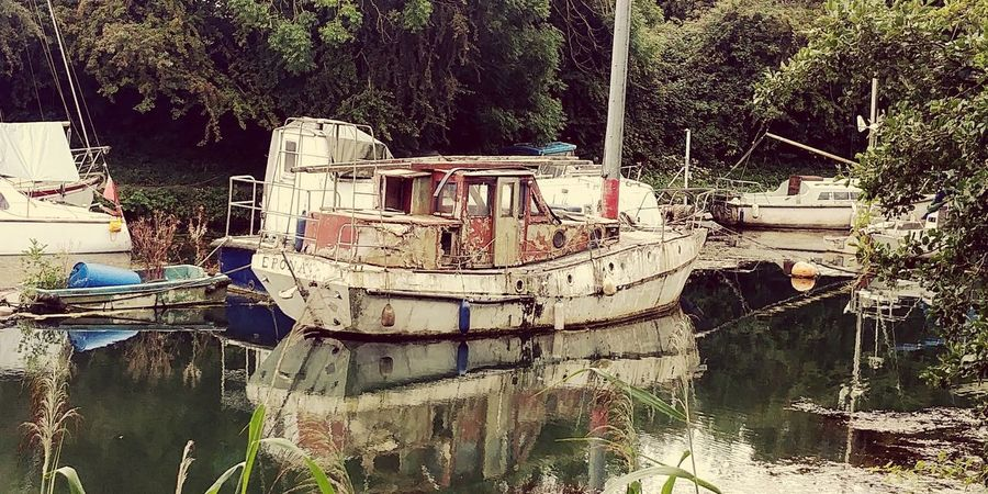Nautical Vessel Moored No People Growth Outdoors Water
