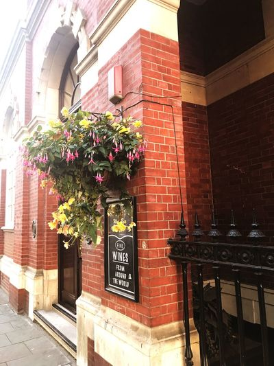 Building Exterior Architecture Built Structure Flower No People Outdoors Day Window Box City Restaurant Postcode Postcards