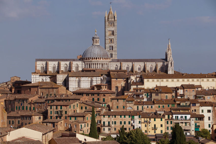 Architecture City Day Duomo Di Siena History The Past Tower