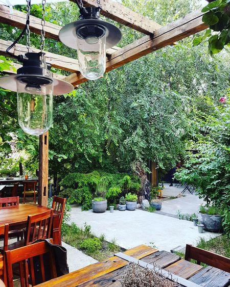 Serbia Belgrade Restaurant Garden