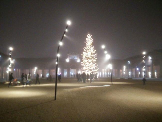 Nebbia Centro Storico Lugo Romagna Pavaglione Albero Di Natale Lugo Di Romagna
