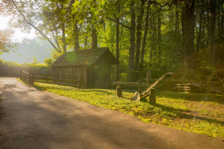 Farm Green Growth Historic Falls Park Light Through The Trees Morning Light Path Wooden Fence Architecture Built Structure Day Farming Forest Green Leaves Harmony With Nature Nature No People Outdoors Plowed Field Shed Sun Flare Tranquility Tree Vintage Farm Machinery Wooden Structure