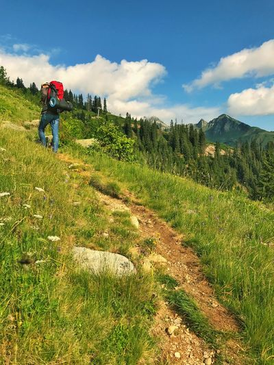 Hiking Trail Alps Real People One Person Mountain Nature Backpack Sky Full Length Grass Rear View Lifestyles Leisure Activity Beauty In Nature Scenics Day Men Walking Hiking Outdoors Landscape