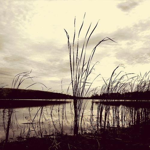Красота природы♥