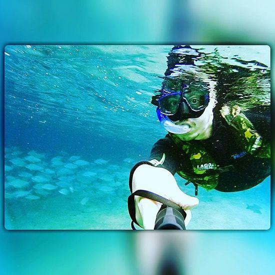 Snorkeling Mergulho Peixe Beautiful Nature Nationalgeographic Animalplanet Comunidadlatinsonyactioncam Undewater Travelphotography Traveler Picoftheday Instaphoto Instalike Besttrip  Matogrossodosul Sonyaction Riodaprata Matogrossodosul Fazenda Olhodagua @aguasdebonito @bonitourviagens