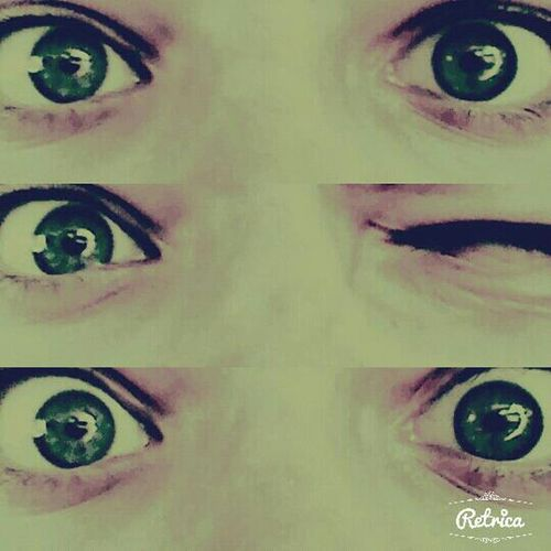 Retrica Myeyes Cheese! Night