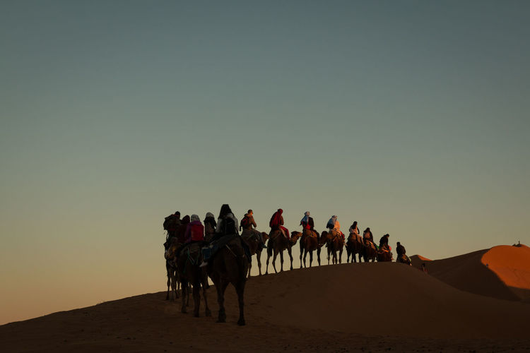 People riding camels on sand dune against sky