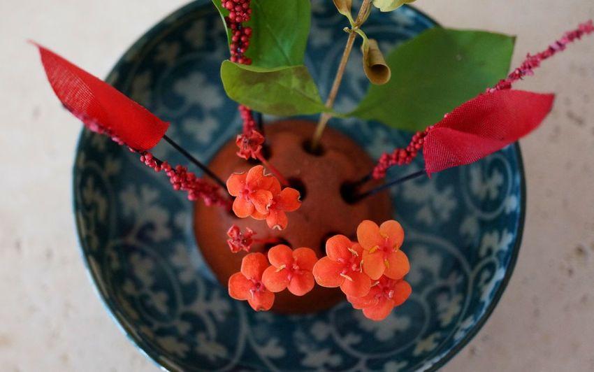 Delicate flower arrangement. Ikebana. Close-up Flower Flower Arangement Focus On Foreground Freshness Growth Petal Pink Color Plant Red Selective Focus ıkebana