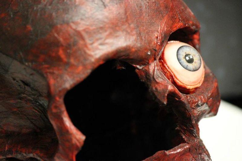 Art And Craft Eye Socket Broken Bone One Eye Blue Eyes Red Skull Halloween Decoration Hand Made Dead Scary