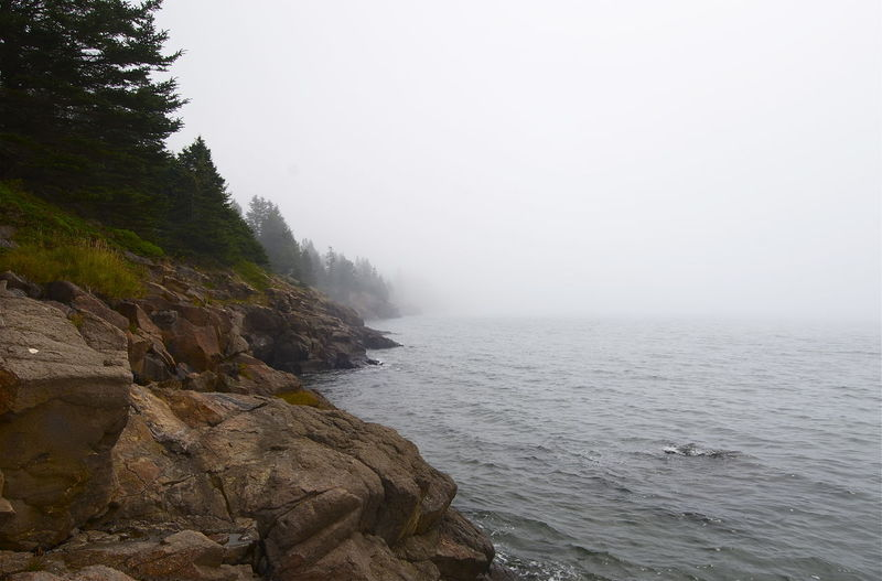 Bay Of Fundy Grand Manan Island New Brunswick, Canada New Brunswick Beauty In Nature Day Flowing Flowing Water Fog Grand Manan High Tide Idyllic Land Nature No People Outdoors Rock - Object Rocky Coastline Scenics - Nature Sea Sky Solid Tranquil Scene Tranquility Water