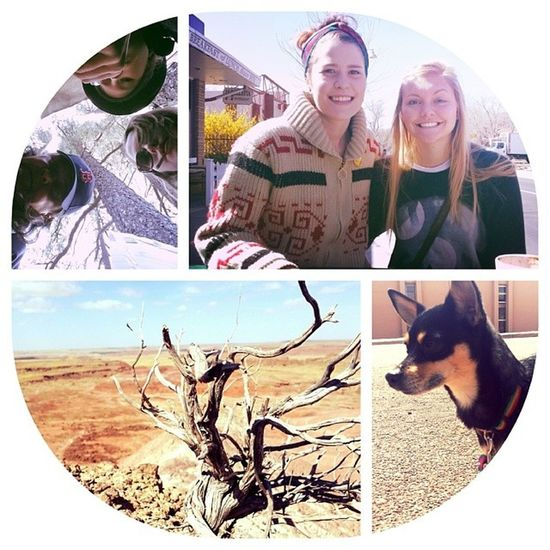 First day in Arizona was wonderful. Spent the morning and afternoon in the Petrified Forest. Then carried on to Flagstaff for the night and got to see @erin122507 beautiful face. Arizona Flagstaff Petrifiedforest Looneylovegood ontheroad roadtrip beautifulpeople