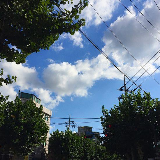 Sky Tree Cloud - Sky Sky Outdoors First Eyeem Photo