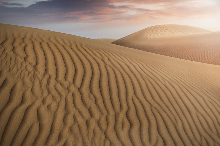 desert sand dunes in the evening sun with cloudy sky Pattern Sand No People Arid Climate Natural Pattern Climate Land Desert Sand Dune Wave Pattern Scenics - Nature Nature Landscape Beauty In Nature Tranquility Non-urban Scene Environment Tranquil Scene Sky Day Outdoors