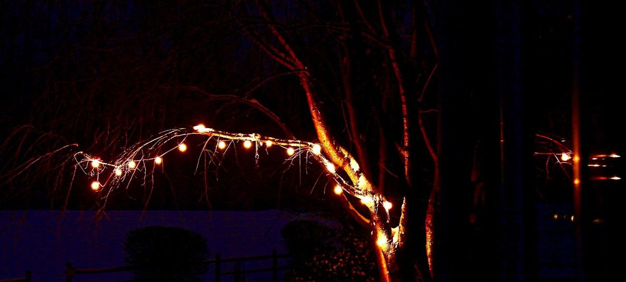 Johnleephotography Winter 2016 Outdoors Snow Tree Hanginglights Shotoncanon Insomnia Sleep Deprived No Sleep CanonT5i Manfrotto