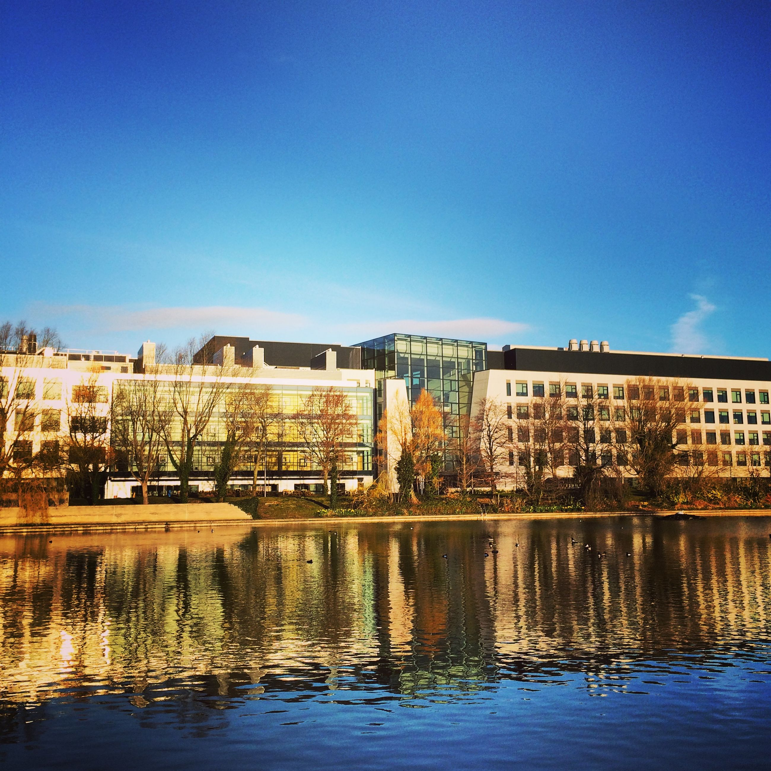 architecture, built structure, building exterior, water, clear sky, blue, waterfront, copy space, reflection, river, city, residential structure, residential building, building, sky, day, canal, lake, outdoors, house