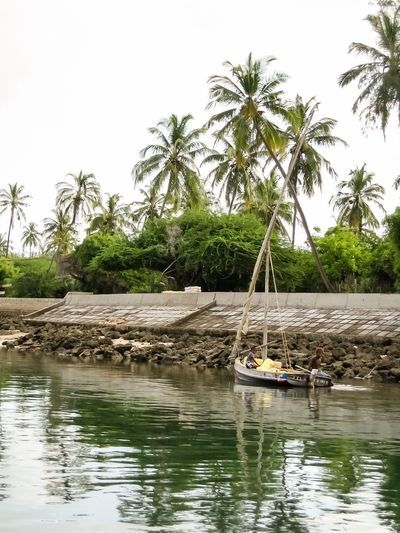 Isiolo Kenya Island Indian Ocean Sailboat Sail Boat Docked Docked Boat Tied Up Palm Tree Palm Trees Water Blue Sky Boys Curious Curious Boys Green Water Green Travel Travel Destinations Travel Photography Africa