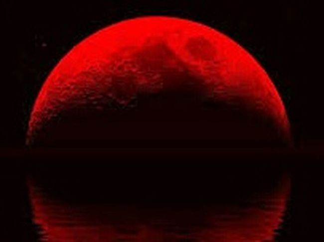 Red blood moon 🌇🌇🌃 Totallunareclipse Reddish Curious Mystery