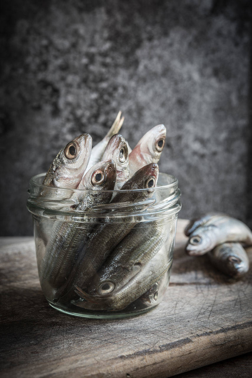animal, vertebrate, no people, freshness, close-up, food and drink, fish, food, indoors, table, wood - material, seafood, container, one animal, animal themes, focus on foreground, wellbeing, healthy eating, jar, raw food, animal head
