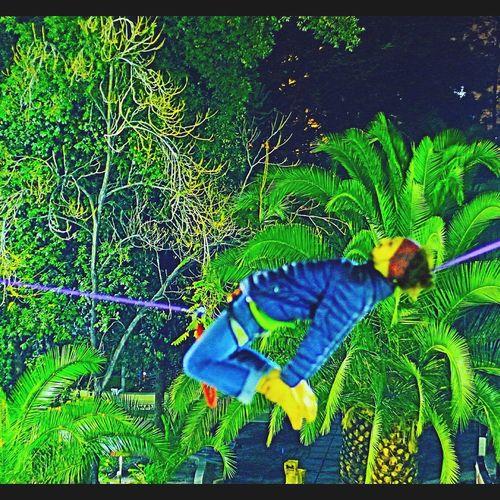 Showcase June Slackline, Equilibrio Slackline Equilibrio Slaker Slackvida Highline Slacklife Pierre Athleisure Colour Of Life The Color Of Sport