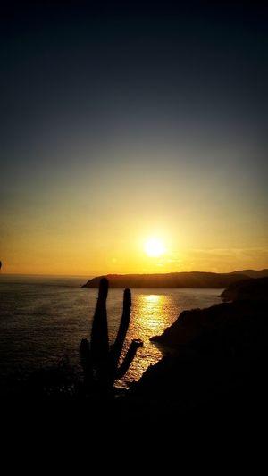 sunset Bright