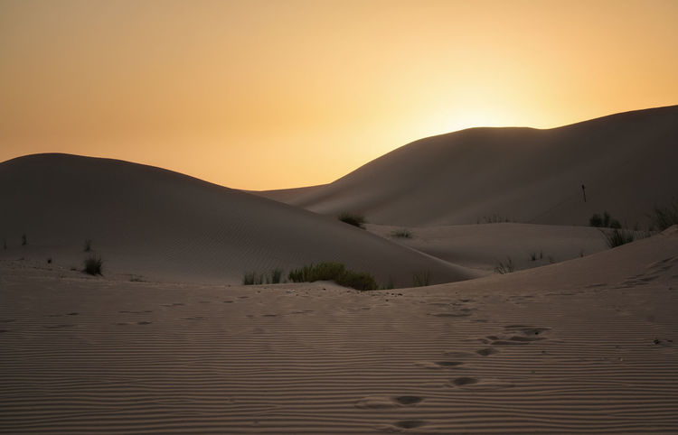 Sunset in desert Abu Dhabi Abu Dhabi Arid Climate Beauty In Nature Desert Landscape Middle East Nature No People Non-urban Scene Outdoors Sand Sand Dune Scenics Sunset Tranquil Scene Tranquility Pattern, Texture, Shape And Form Patterns In Nature Sunlight And Shadow Clear Sky Sand Dunes