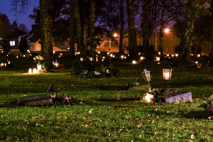 Graveyard Grieving All Saints' Day All Saints  All Saints' Day All Saints Day Candlelight Candles Honouring The Dead Honour Sorrow Sadness Grief Gravestone Graves Graveyard Grave Tree Grass Night Illuminated Lighting Equipment Outdoors No People Street Light