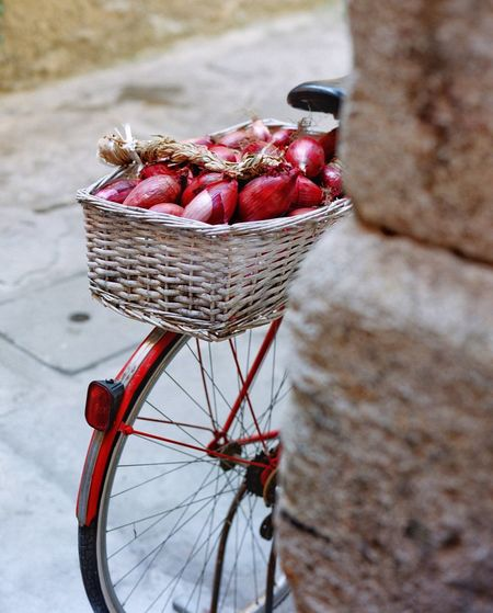 Tropea onions Cipolla Rossa Lunga Di Tropea EyeEm Filmphotography Italy Calabria Onion Basket Container Transportation High Angle View Freshness Day Food And Drink No People Bicycle Red Food Healthy Eating