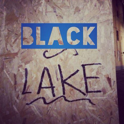 Bjork Vulnicura Blacklake Art Arte Genious Genio