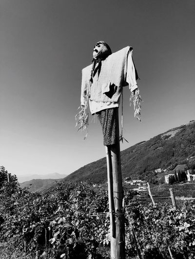 Scarecrow by plants against mountain and clear sky