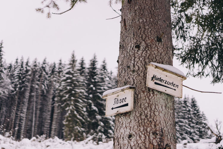 Information sign on tree trunk during winter