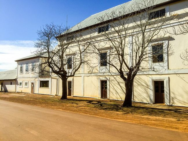 New Norcia Benedictine Monastery Place Of Worship Place Spiritual Religious  Historic Architecture Building New Norcia Western Australia White Cream Monastery Benedictine Monastic Australia Trees Leafless (null)Branches Tree Shadow Shadow Exterior Old