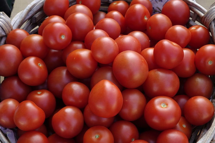 Abundance Basket Close-up Day Food Food And Drink Freshness Healthy Eating Indoors  Large Group Of Objects Many Of A Kind No People Red Color Tomatoes