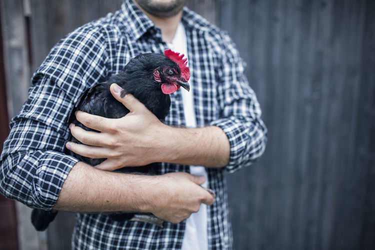 Midsection of man holding bird