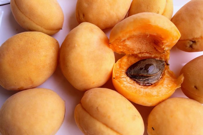 Apricot Close-up Day Food Food And Drink Freshness Fruit Healthy Eating Indoors  No People Ready-to-eat Sweet Food