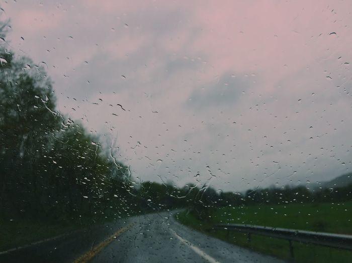 Rainy days Outdoors Rain Rainy Season RainDrop Weather Sky Nature