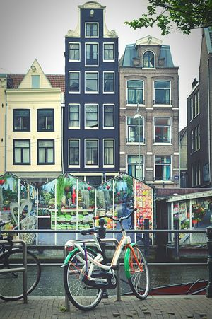 Amsterdam Streets Amsterdam Canal By The Canal Amsterdam Life Bicycles Of Amsterdam Bikes Street Photography Green Houses Tall Buildings Quirky Buildings Hanging Out Taking A Break in Amsterdam Nikon D3200