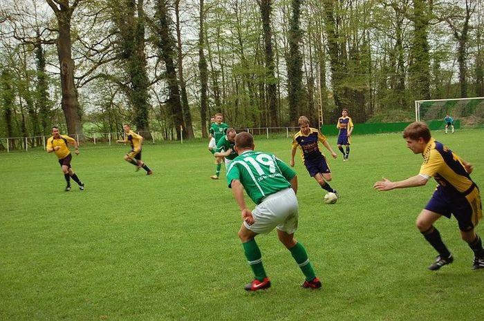 Fußballfieber Teamwork Sports Photography Sports Day