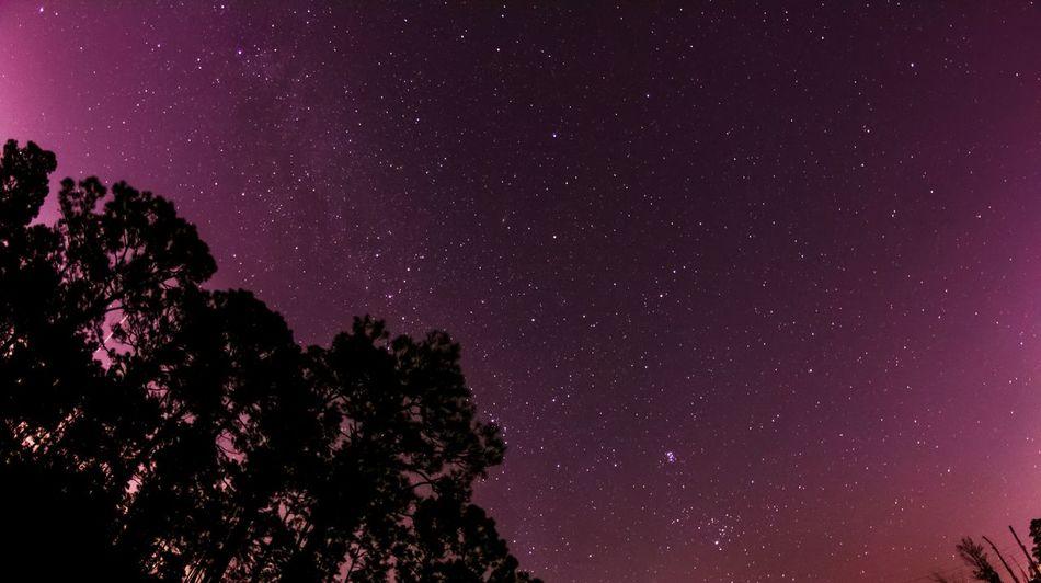 Working on my astro skillz...still a huge beginner!! This is my first attempt Landscape Astrophotography Stars Galaxy Nightphotography Nightsky Eye4photography  EyeEm Best Shots Shadow Play Starry Sky Staugustine EyeEm Gallery Learn & Shoot : After Dark