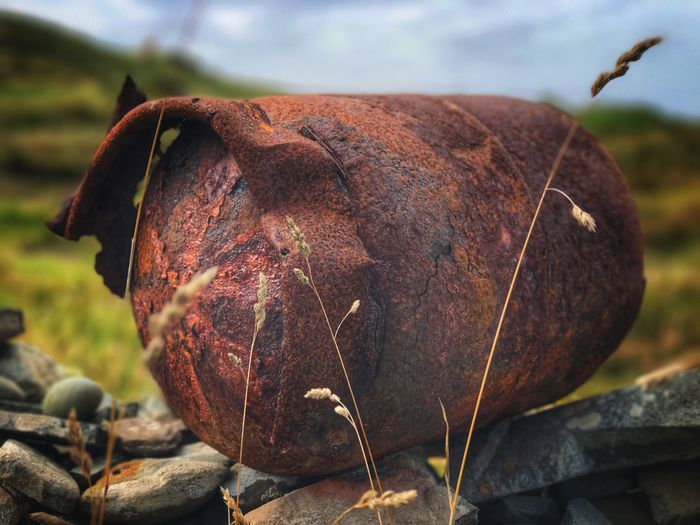 Old rusty gas cylinder littering a dry stone wall Cape Clear Ireland Damaged Day Focus On Foreground Outdoors Dry No People Close-up Field Rusty Gas Cylinder Rotting Leaf Bad Condition Nature Sky Tree Grass Food Freshness Rubbish
