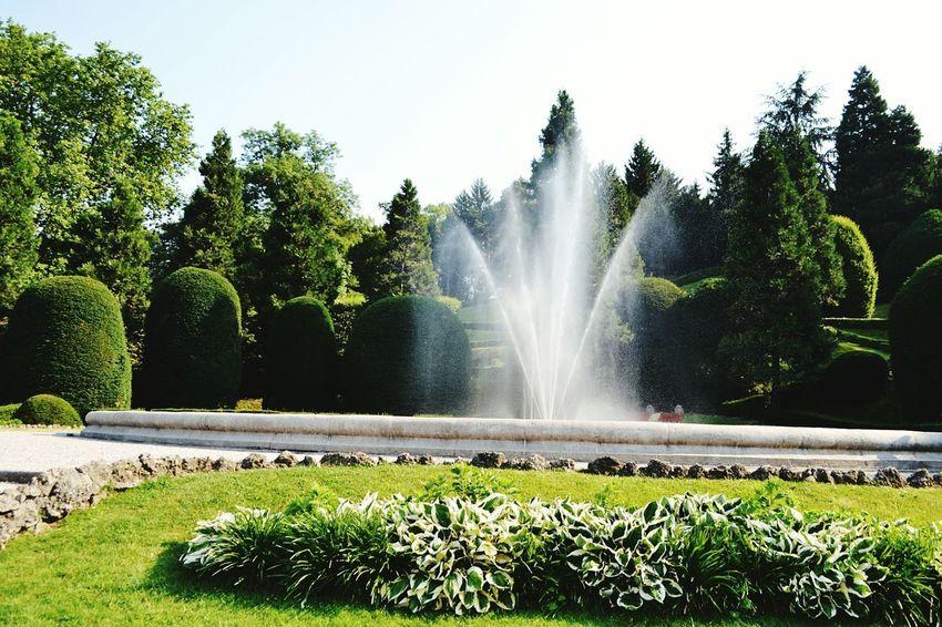 Fountain Tree Nature Day Outdoors Sky Freshness