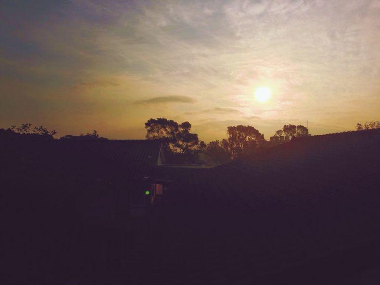 是個看日出就會感到幸福的女子 sunSunrisenTunghai University