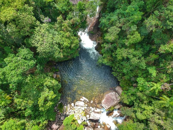 waterfall Waterfall Mountain Landscape Nature_collection Nature River Riverside Drone  Water Tree High Angle View Green Color Grass Mountain Range Flowing Water