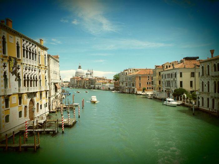 Venice cityscape in a sunny day