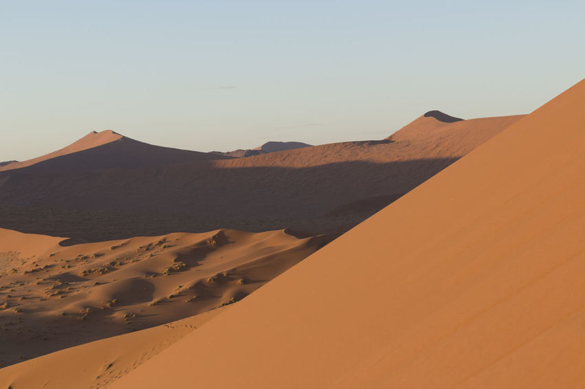 Arid Climate Beauty In Nature Clear Sky Day Desert Extreme Terrain Landscape Namib Desert Namib Dunes Namibia Namibia Landscape NamibiaPhotography Nature No People Outdoors Physical Geography Remote Sand Sand Dune Scenics Sky Tranquil Scene Tranquility