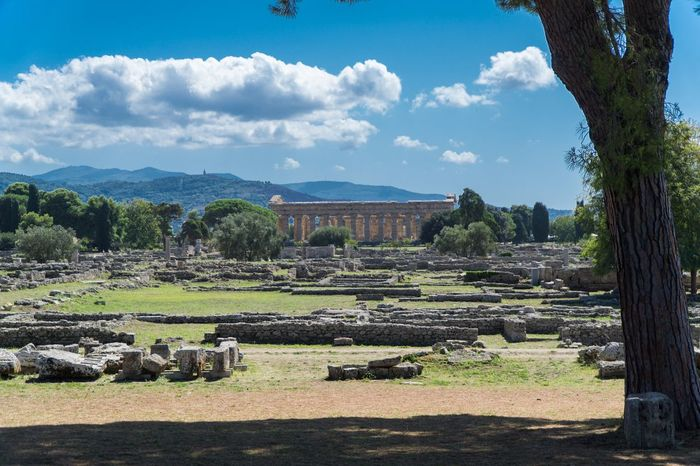 Paestum Roman ruins, Italy Roman Ruins Architecture Tree Plant Built Structure Sky Nature The Past Mountain Sunlight Outdoors Building Exterior Day Ancient Travel Destinations Landscape Cloud - Sky History No People Building Field