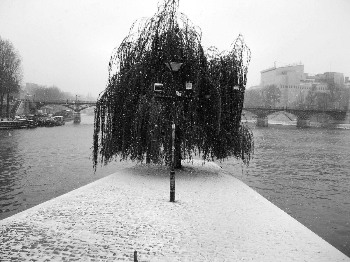 Blackandwhite Island Pattern Romantic Sad Seine Winter