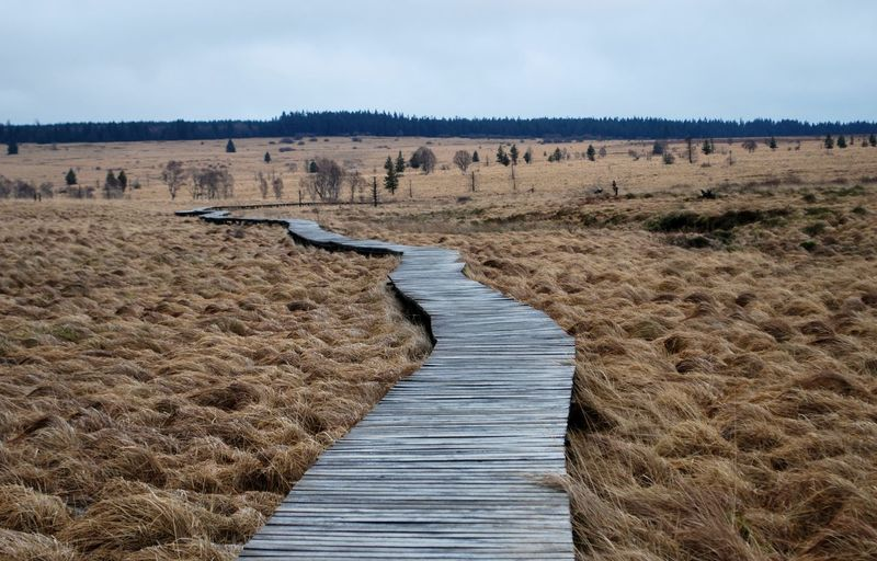 Ardennes Belges Les Fagnes Signal De Botrange Slatted Floor Winter Beauty In Nature Bog Cloud - Sky Day Landscape Moors Nature No People Outdoors Scenics Sky The Way Forward Tranquil Scene Tranquility