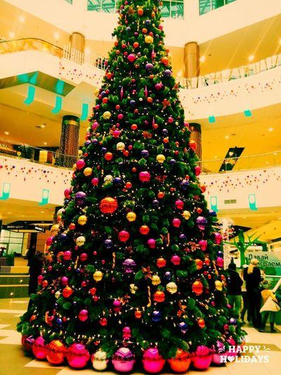 VolgogradCity Christmas Decoration европаситимол новый год 2015 Live For The Story