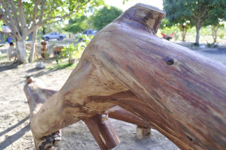 Bonito padrão em madeira envernizada. Wood Art